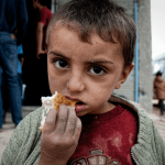 polonya mültecileri